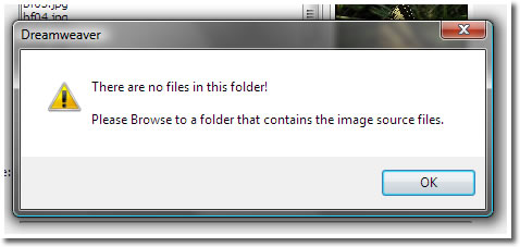Image of alert Box: There are no Files in this Folder
